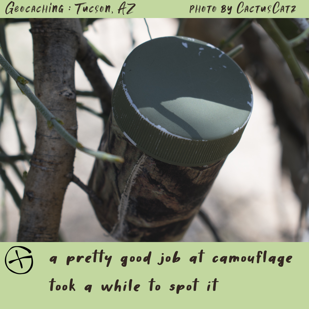 Geocaching in Tucson : camo container