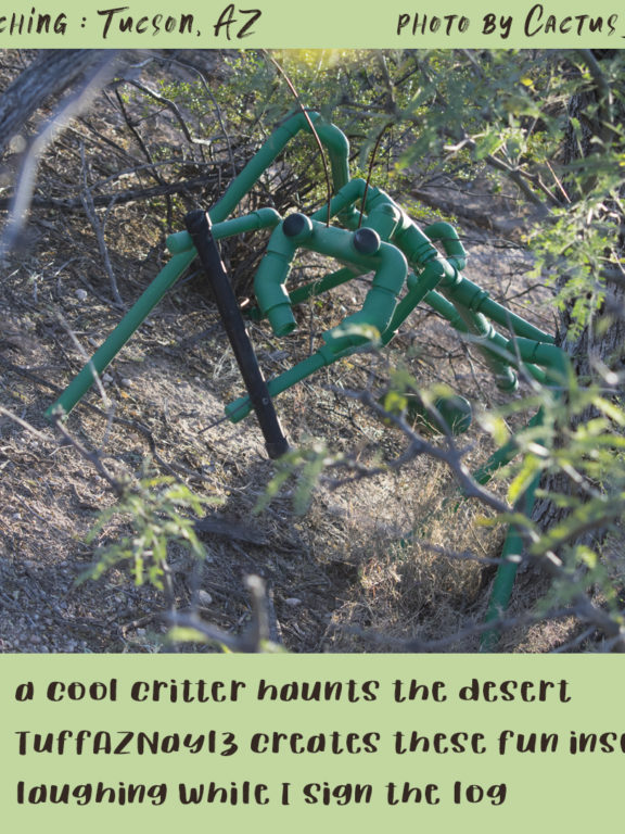 Geocaching in Tucson: Critter Cache