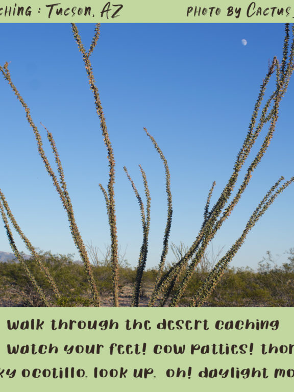 Geocaching in Tucson: daylight moon
