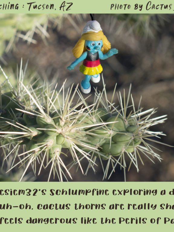 Geocaching in Tucson : Perils of Schlumpfine!