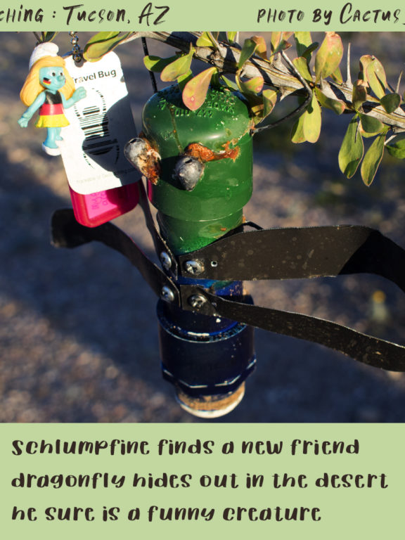 Geocaching in Tucson : Schlumpfine TB makes a new friend