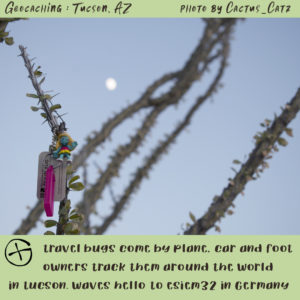 schlumpfine travel bug hanigng on an ocoitillo branch under a daylight moon, photo by M. LaFreniere, GeocachingCactus